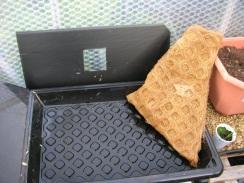 Insert tray