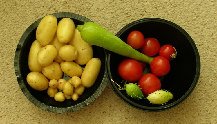 late-harvest