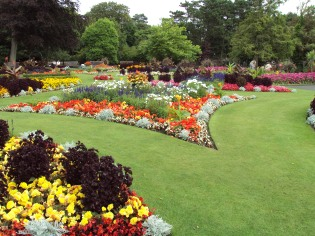 flower_garden_botanic_gardens_churchtown_2