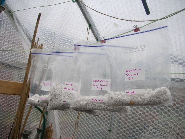 germinating bags