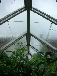 Insulated greenhouse