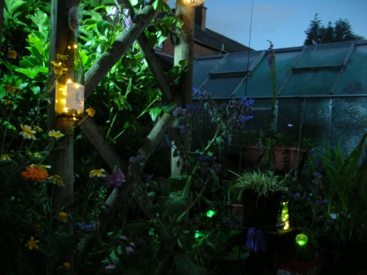 Garden at 23.00
