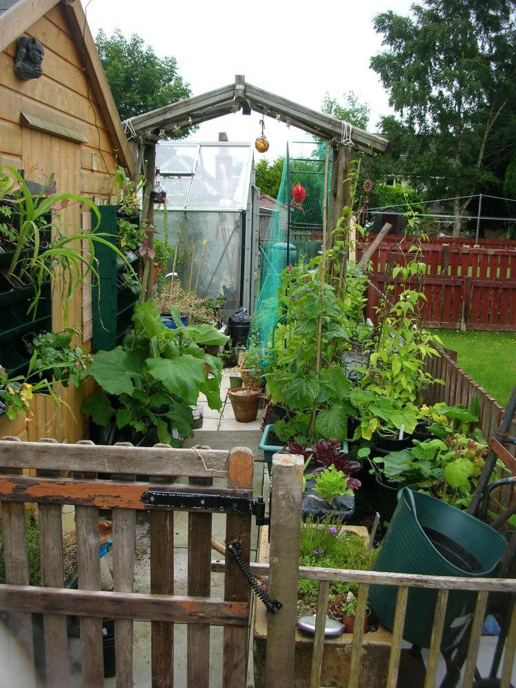 Garden 2017 a