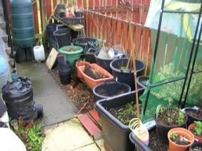 Garden Jan 2929