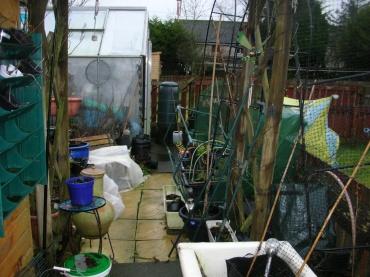 Garden remains 1 Jan 2020