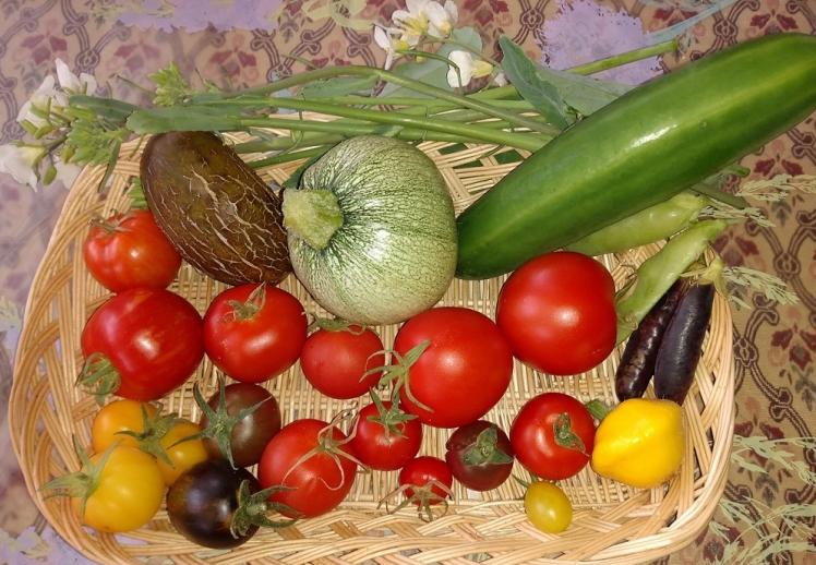Harvestc