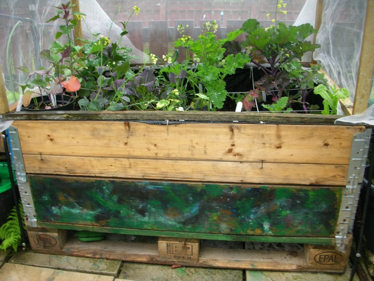 Raised bed painted